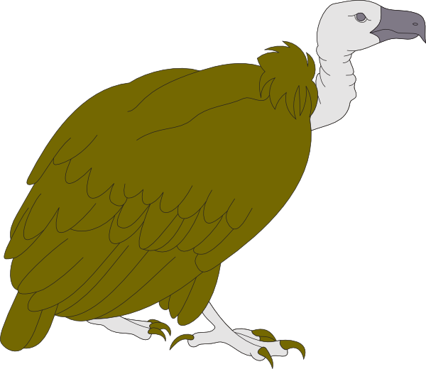 Vulture svg #13, Download drawings