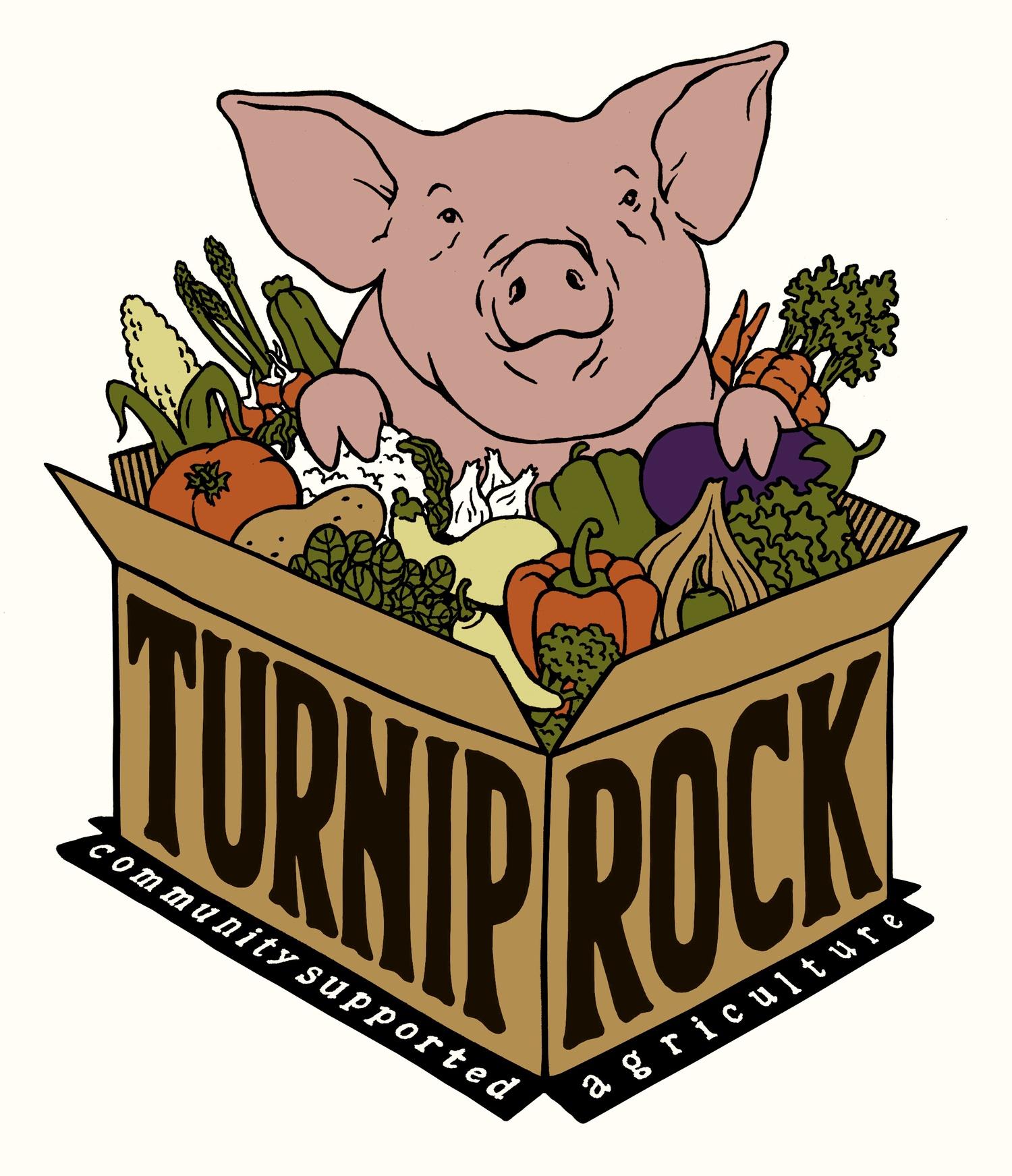 Turnip Rock clipart #12, Download drawings