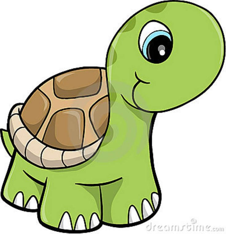 Turtle clipart #13, Download drawings