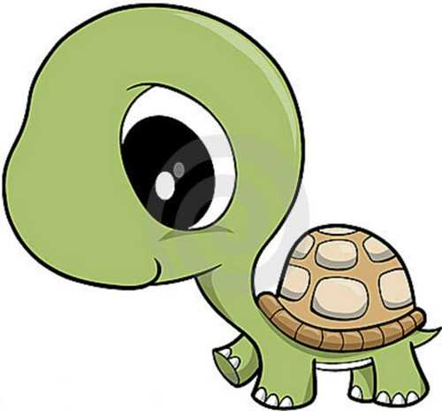 Turtle clipart #6, Download drawings