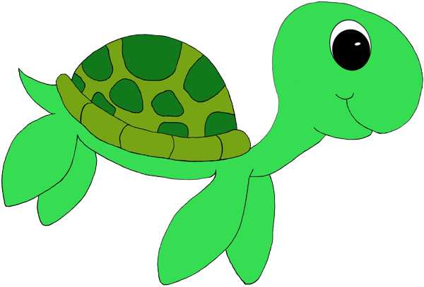 Turtle clipart #17, Download drawings