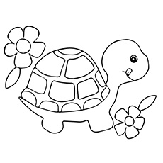 Turtle coloring #20, Download drawings