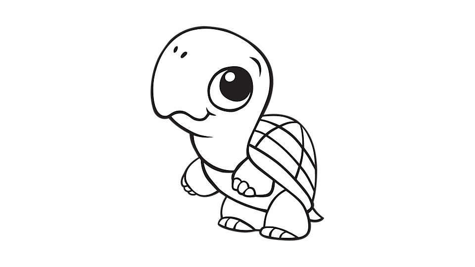 Turtle coloring #14, Download drawings