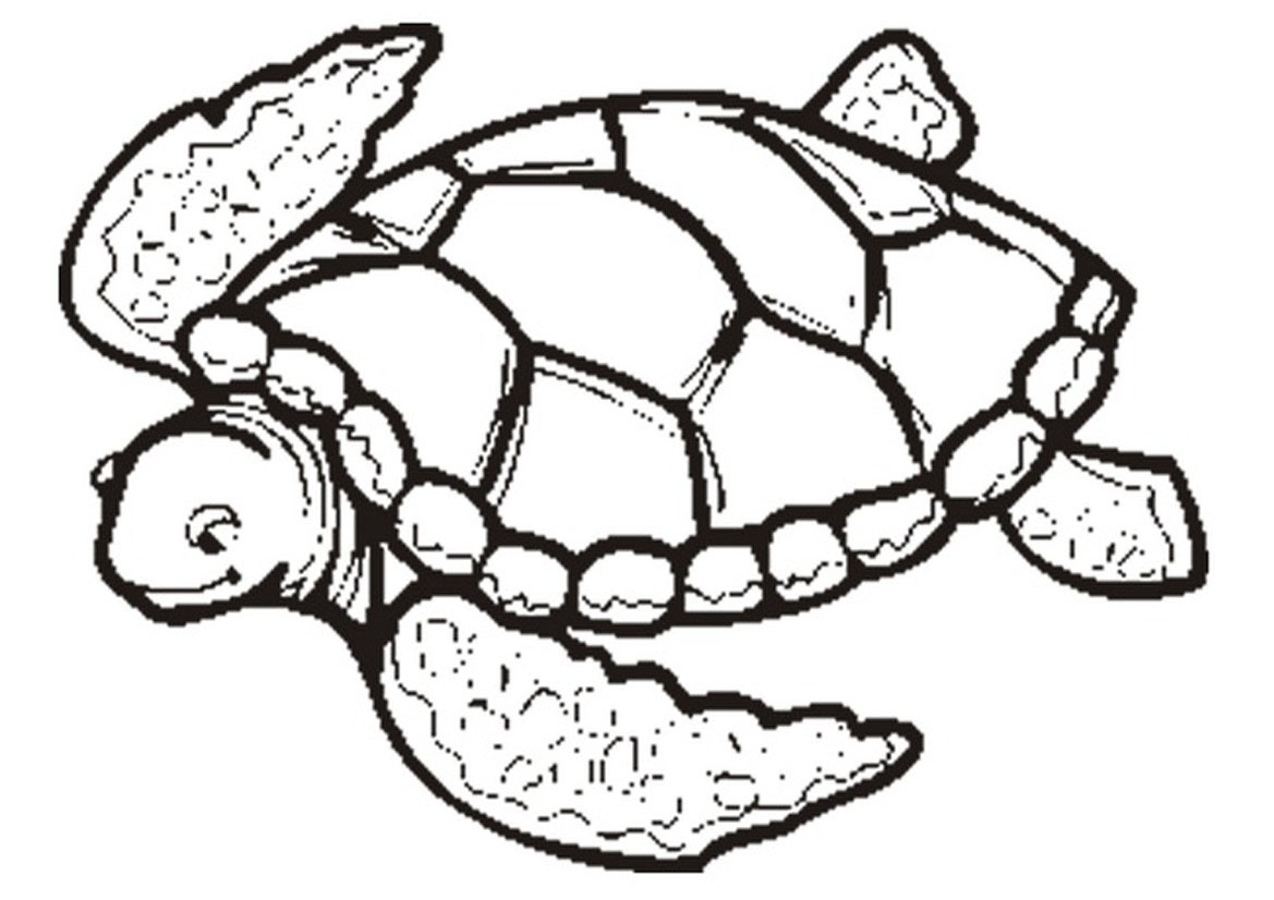 Turtle coloring #12, Download drawings