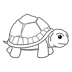 Turtle coloring #19, Download drawings