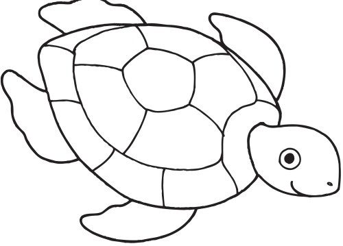 Turtle coloring #1, Download drawings