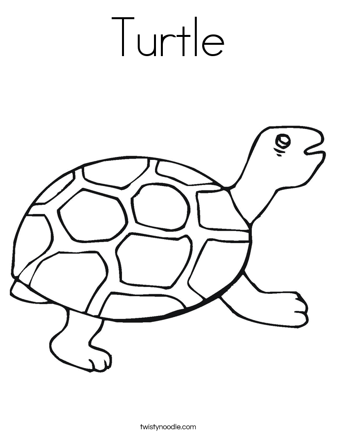 Turtle coloring #7, Download drawings