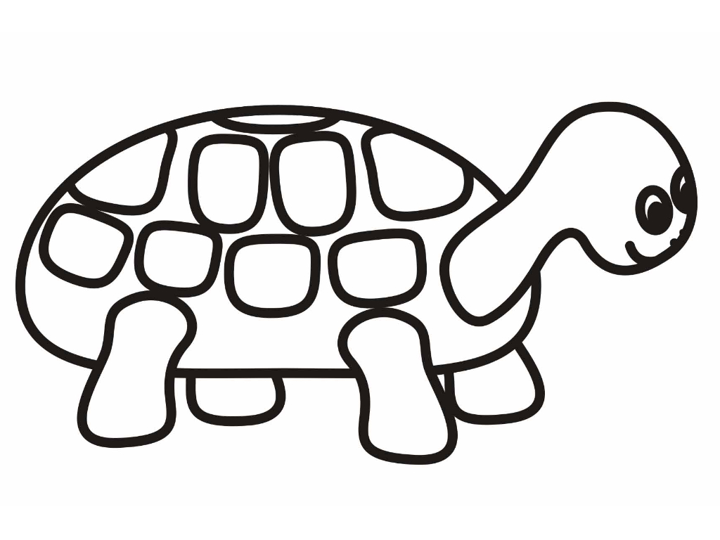 Turtle coloring #3, Download drawings