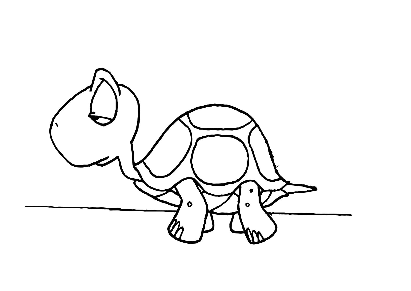 Turtle coloring #6, Download drawings
