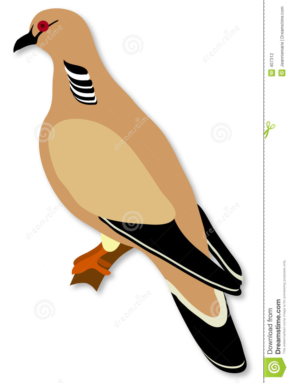 Turtle Dove clipart #14, Download drawings