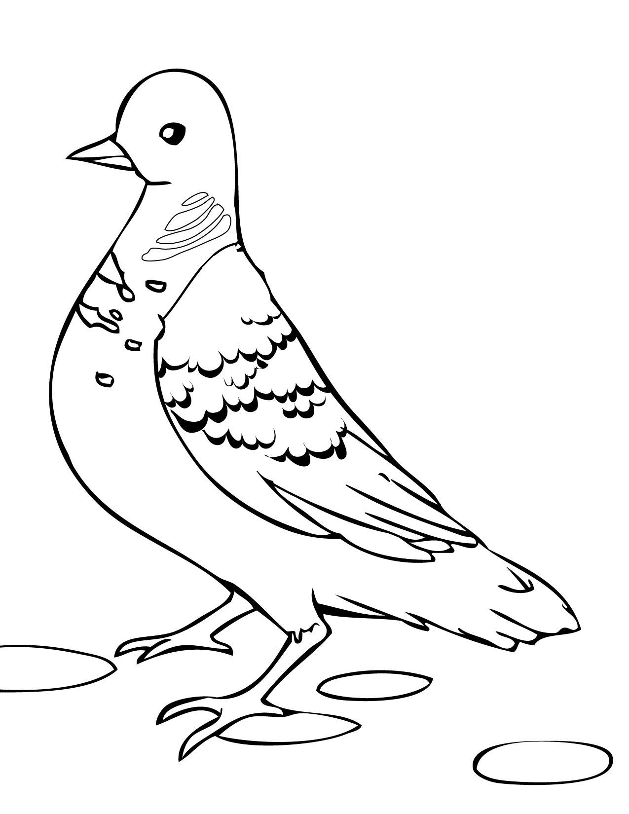 Turtle Dove coloring #16, Download drawings