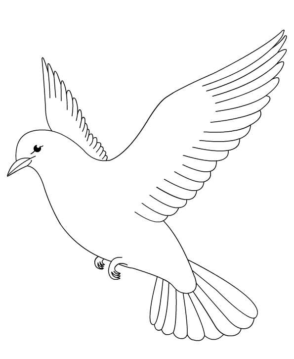 Turtle Dove coloring #6, Download drawings