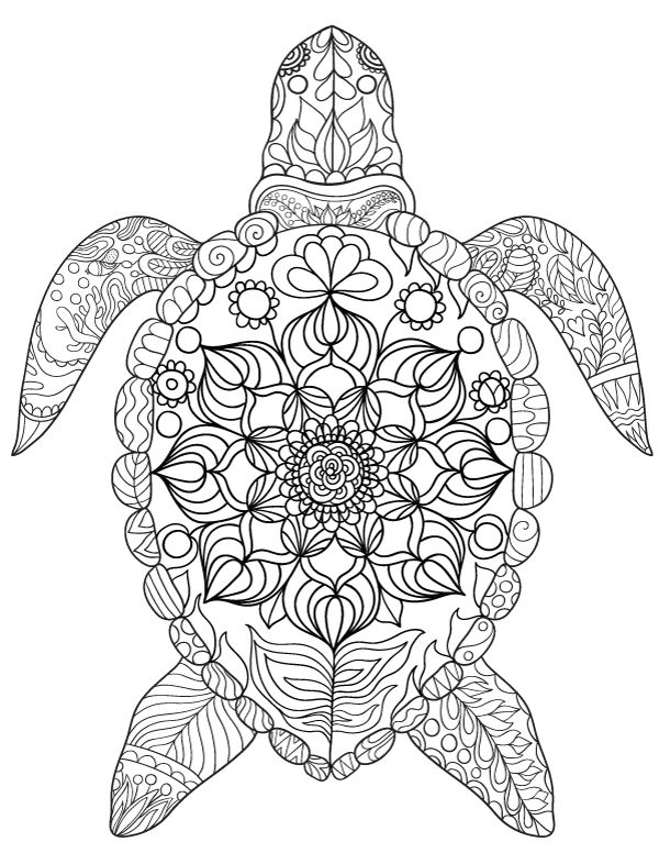 Turtle Monk coloring #7, Download drawings
