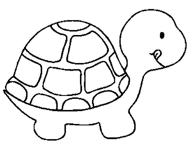Turtle Monk coloring #6, Download drawings