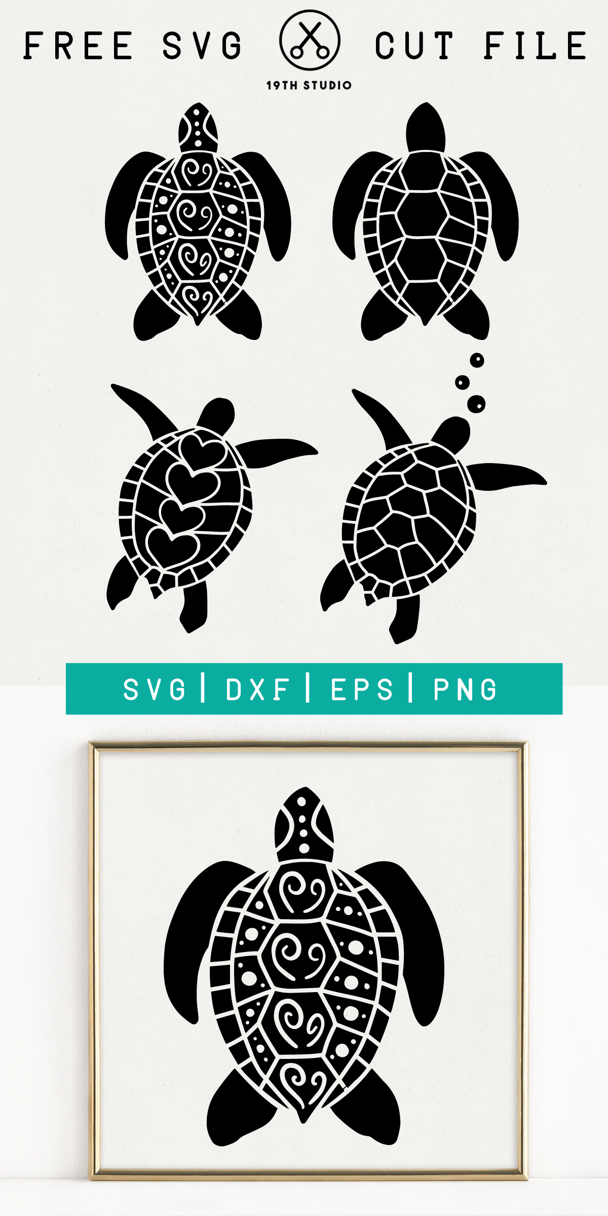 sea turtle svg free #575, Download drawings