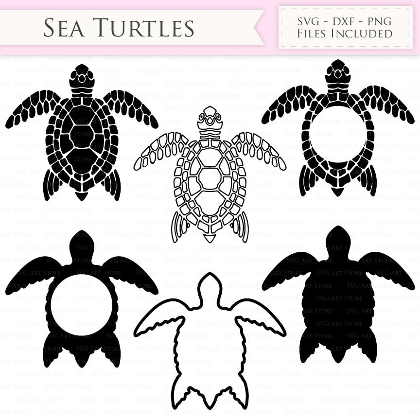 sea turtle svg free #579, Download drawings