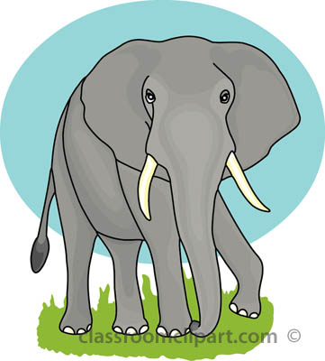Tusk clipart #2, Download drawings