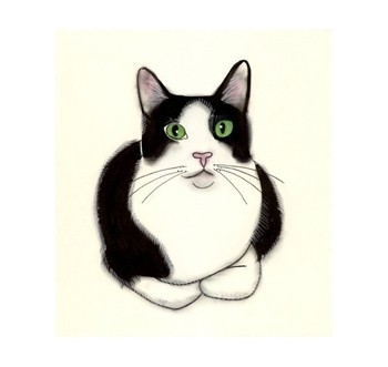 Tuxedo Cat clipart #2, Download drawings
