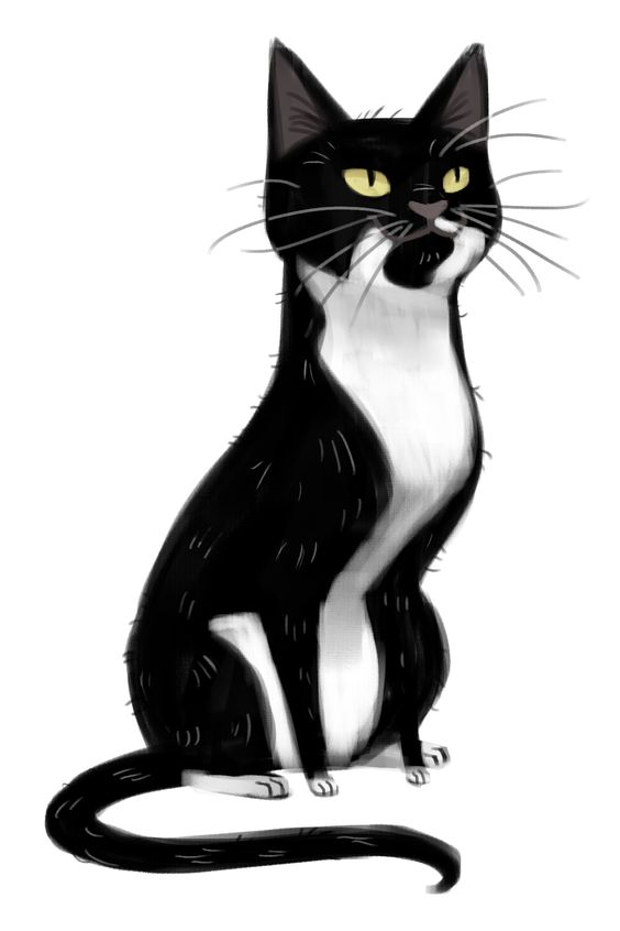 Tuxedo Cat clipart #8, Download drawings