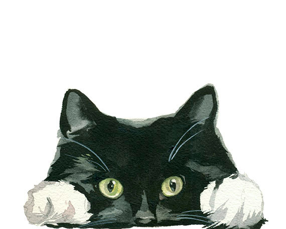 Tuxedo Cat clipart #1, Download drawings