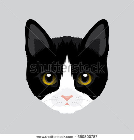 Tuxedo Cat clipart #12, Download drawings