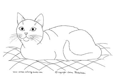Tuxedo Cat coloring #3, Download drawings