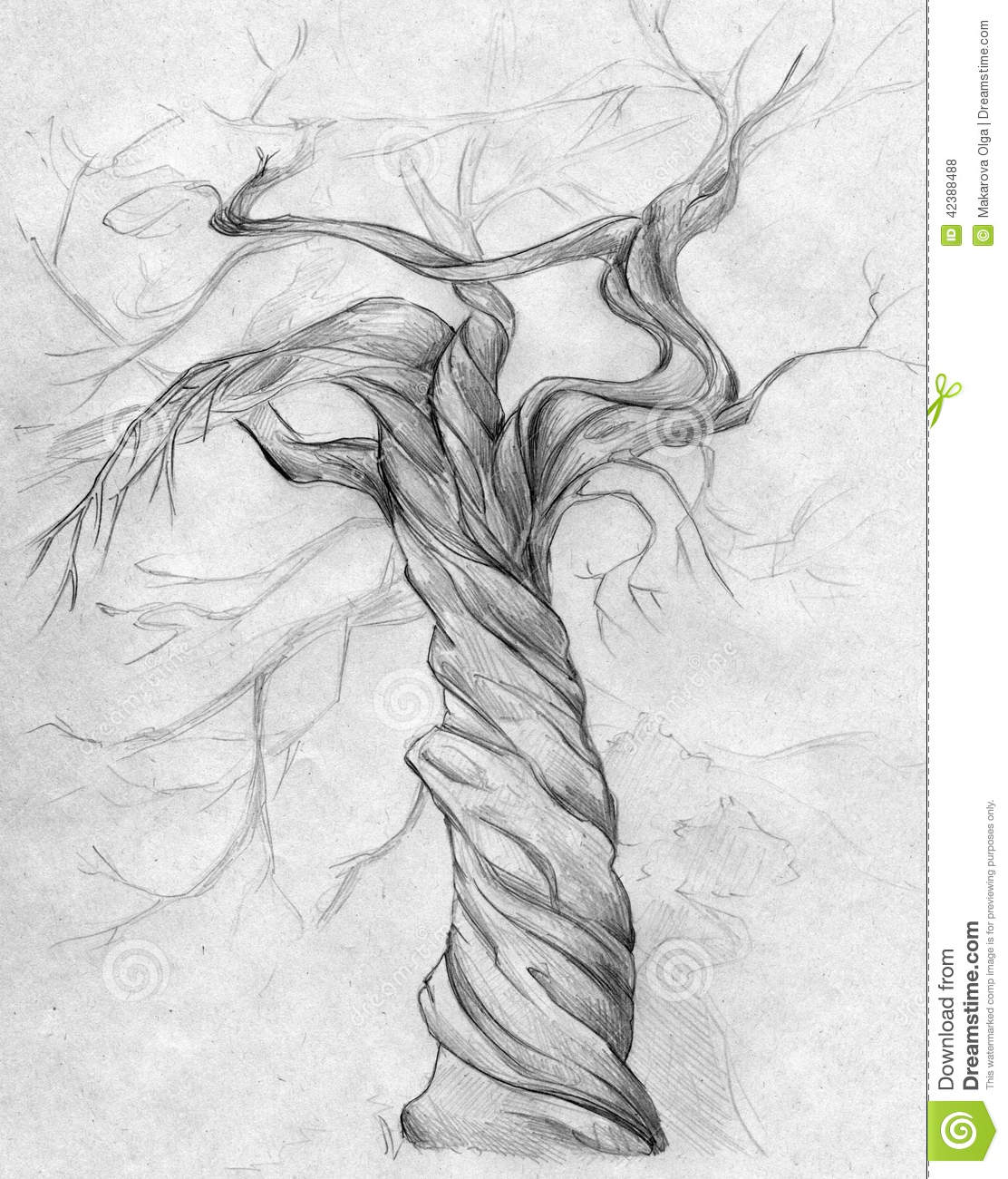 Twisted Tree clipart #18, Download drawings
