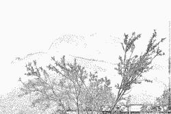 Tyrol coloring #5, Download drawings
