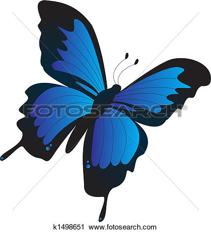 Ulysses Butterfly clipart #9, Download drawings