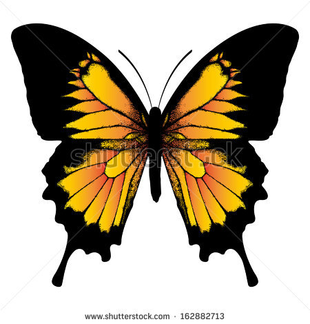Ulysses Butterfly clipart #11, Download drawings