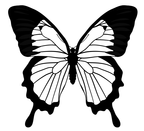 Ulysses Butterfly clipart #2, Download drawings