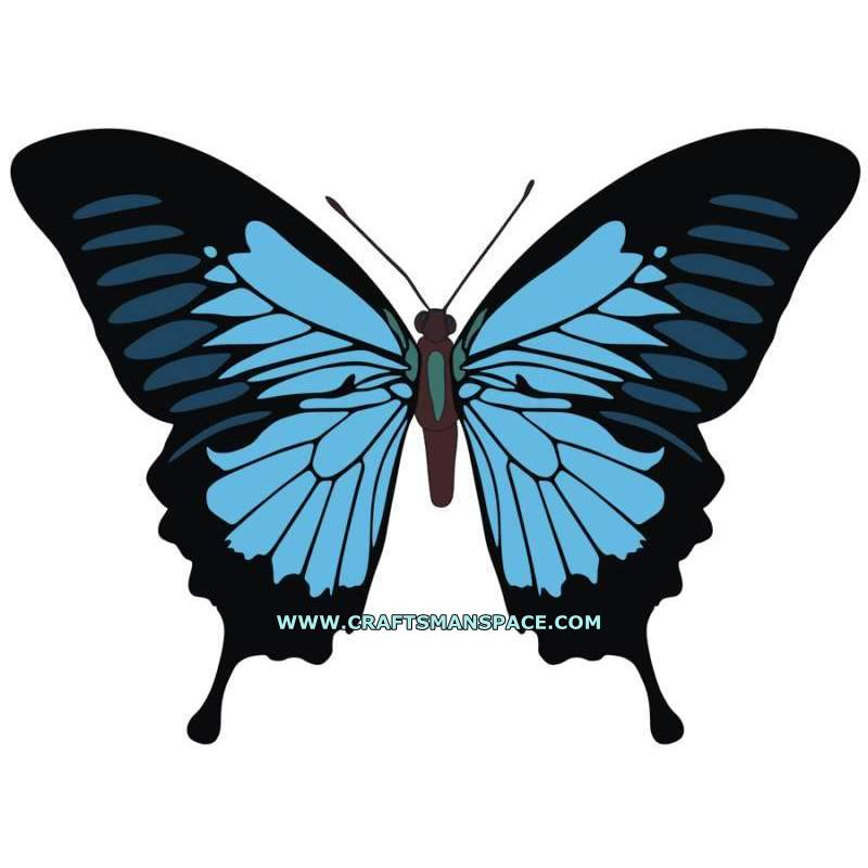 Ulysses Butterfly svg #11, Download drawings