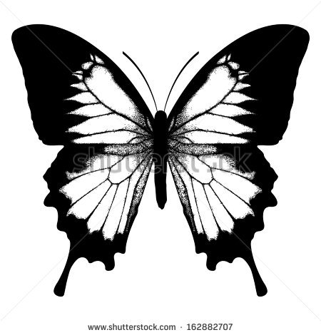 Ulysses Butterfly clipart #6, Download drawings
