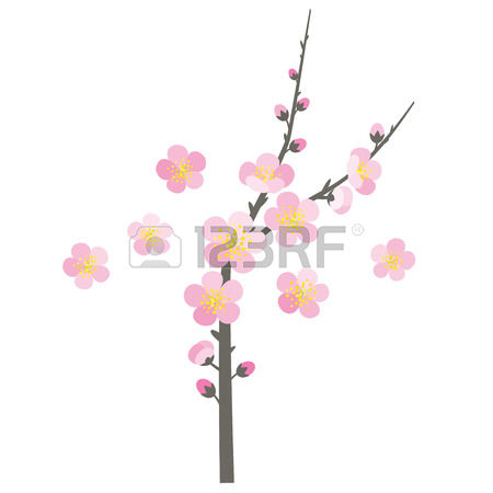 Ume Tree clipart #12, Download drawings