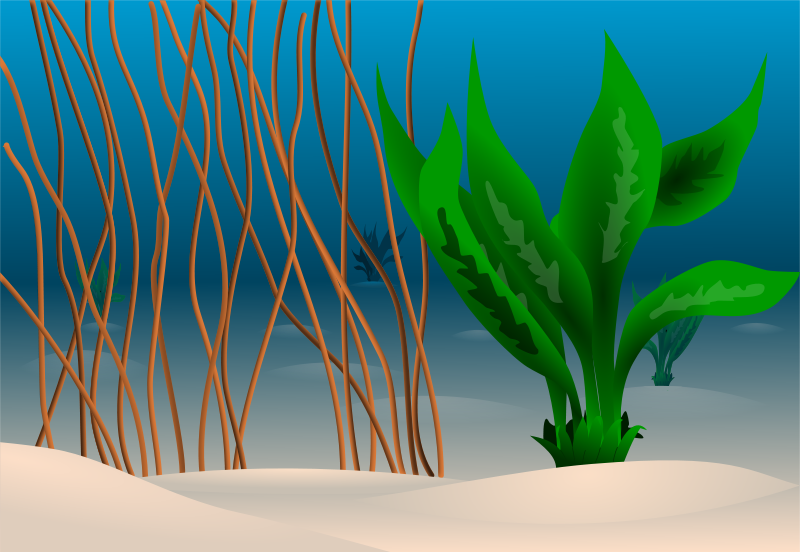 Underwater clipart #3, Download drawings