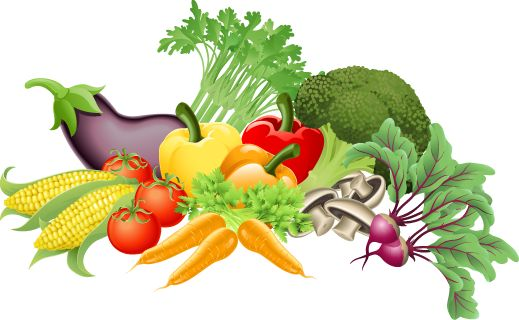 Vegetable clipart #13, Download drawings