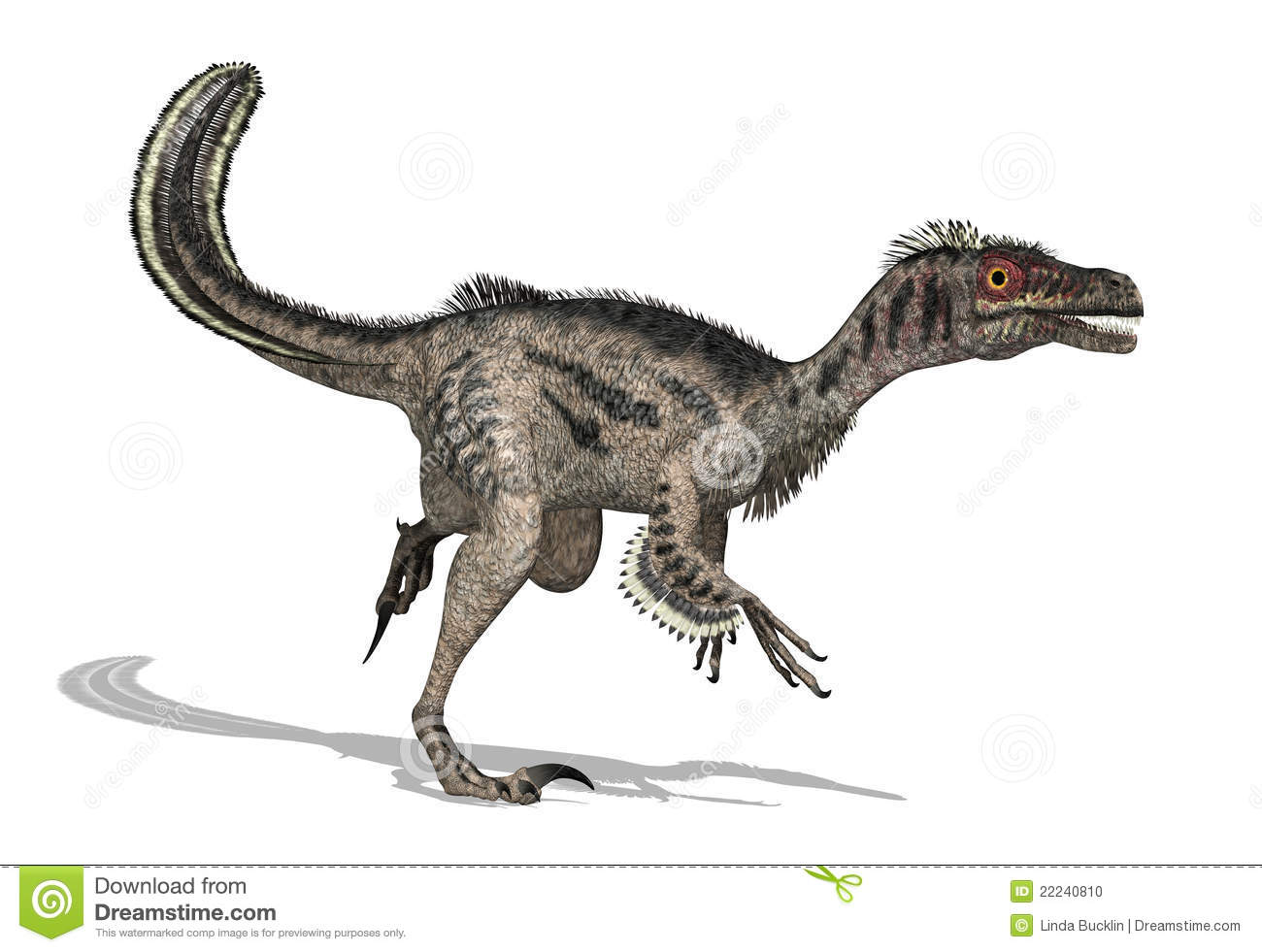 Velociraptor clipart #6, Download drawings