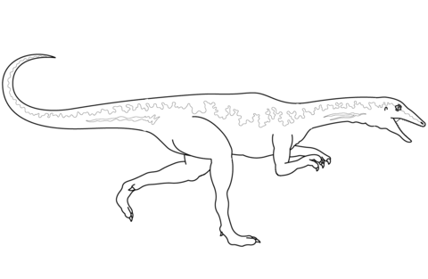 Velociraptor coloring #5, Download drawings