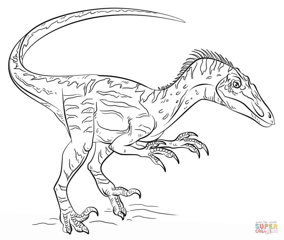 Velociraptor coloring #17, Download drawings