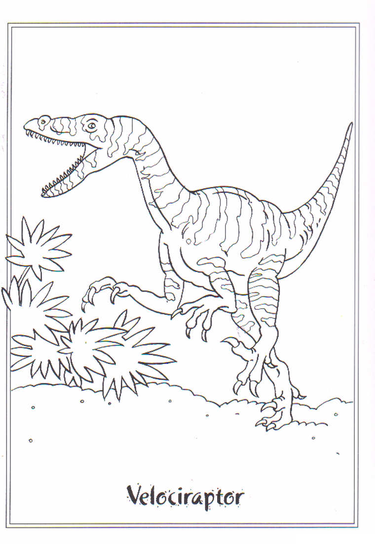 Velociraptor coloring #4, Download drawings