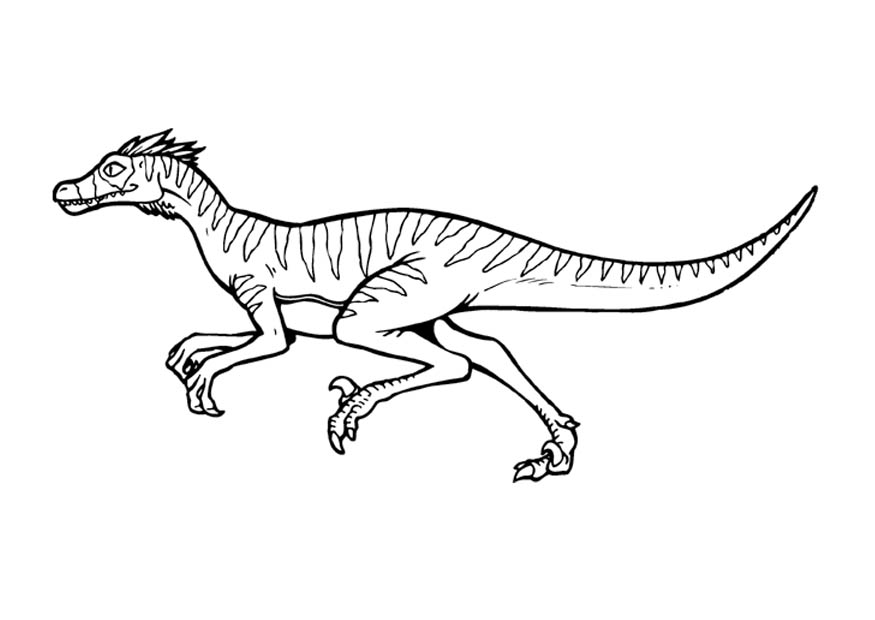 Velociraptor coloring #14, Download drawings