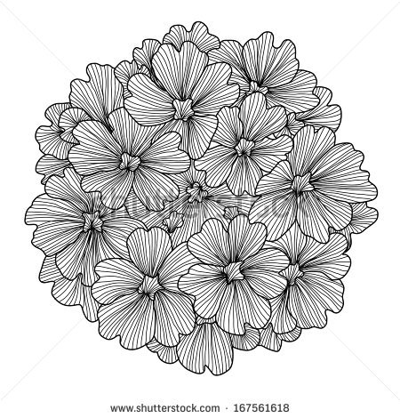 Verbena clipart #9, Download drawings