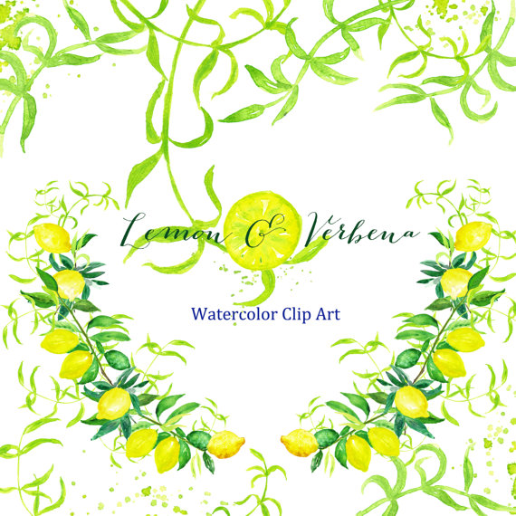 Verbena clipart #4, Download drawings