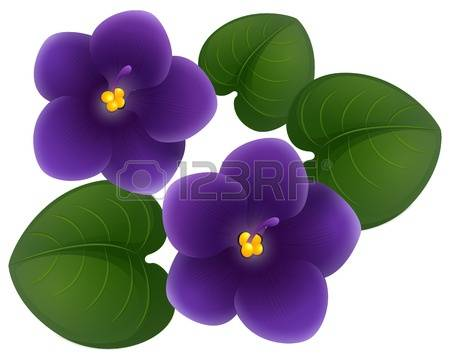 Violet clipart #3, Download drawings