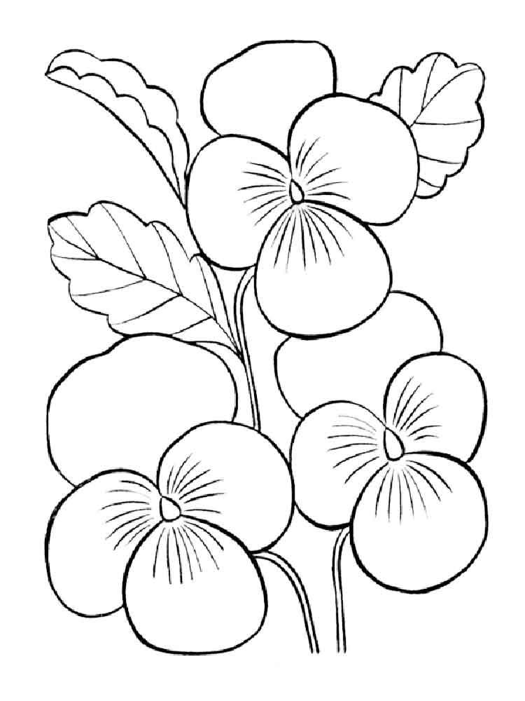 Violet coloring #5, Download drawings