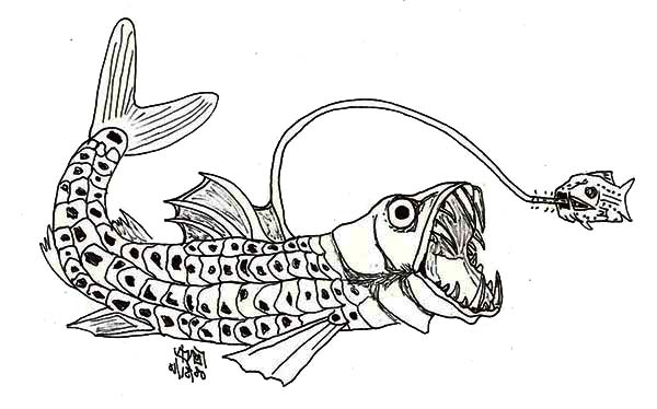 Sea Monster coloring #13, Download drawings