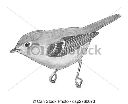 Vireo clipart #19, Download drawings