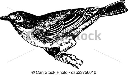 Vireo clipart #16, Download drawings
