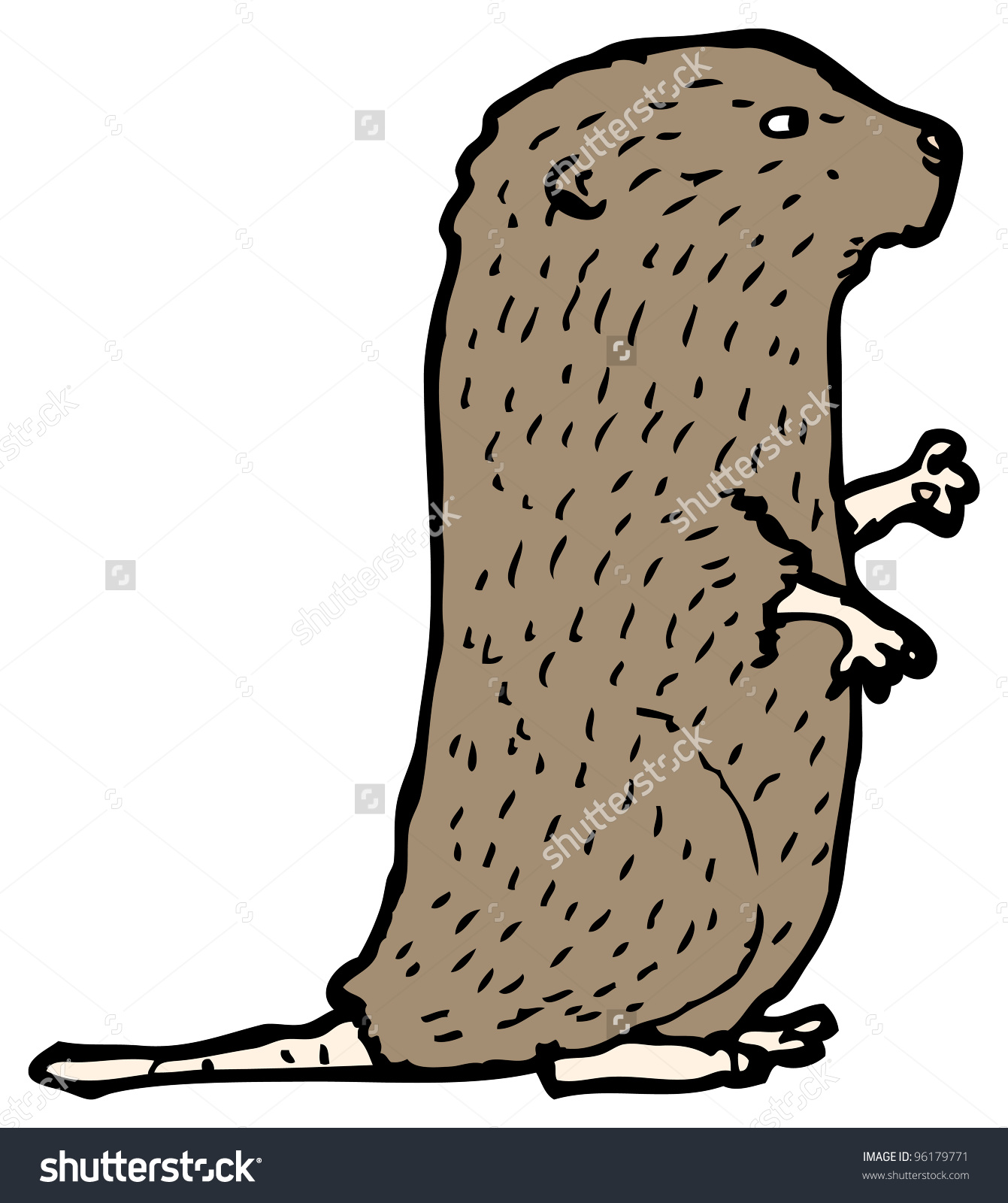 Vole clipart #4, Download drawings