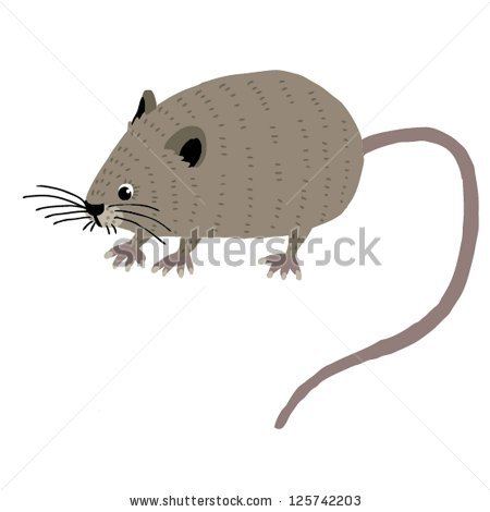 Vole clipart #11, Download drawings